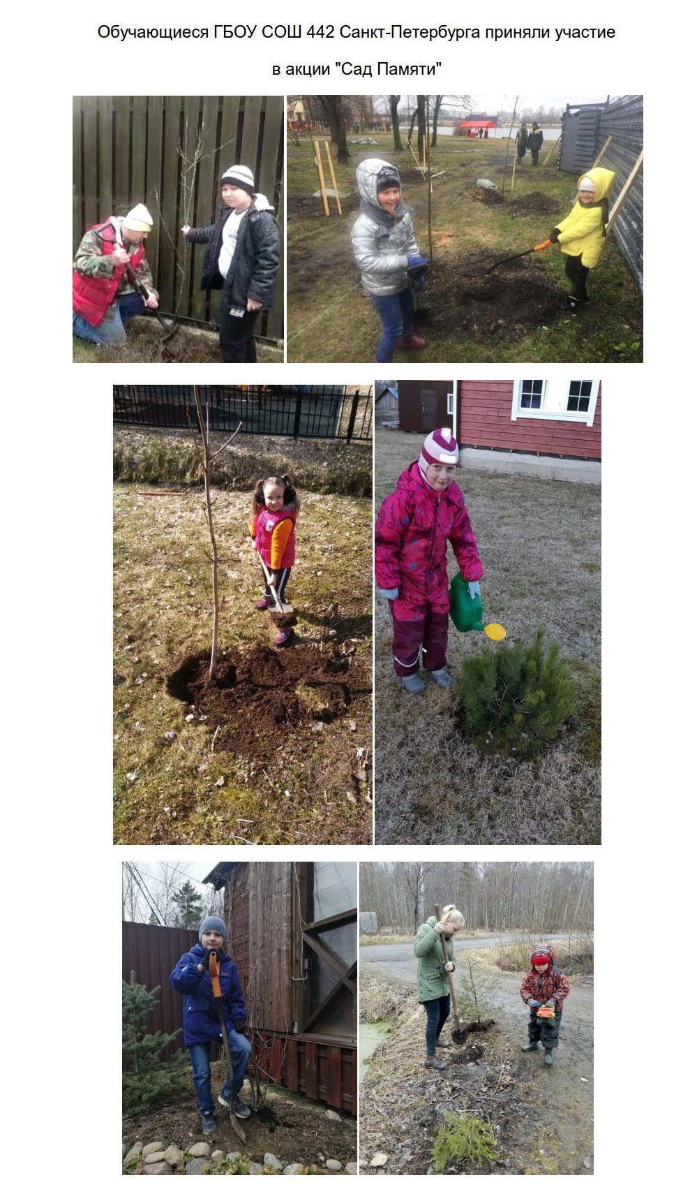 Акция Сад памяти_1