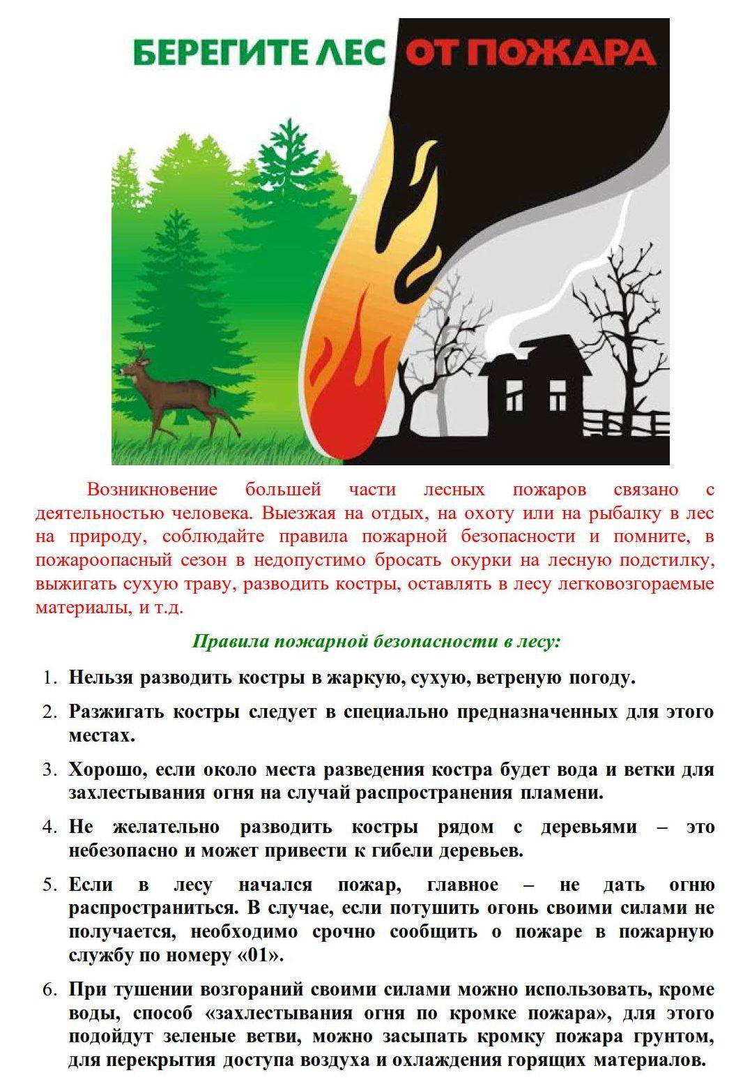 Берегите лес от пожара_1